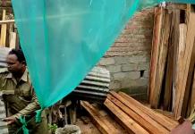 wood seized